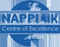 Nappi logo